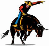 Cowboy bull ridng