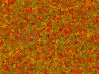 Background of fall leaves
