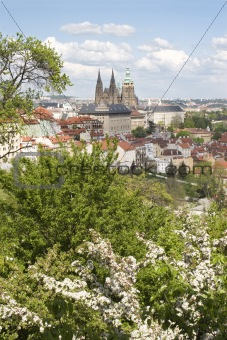 prague - cathedral of st. vitus - spring