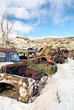 abandoned cars in junkyard