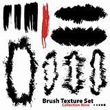 Collection of highly detailed vector illustration brushes and fr