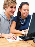 Portrait of a smiling couple using a computer