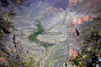Grand Canyon with trail at the bottom