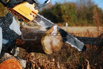 chainsaw cutting log