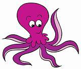 violet octopus