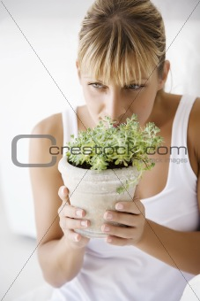 smelling plant