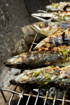 Grilled fishes laying on hot grill