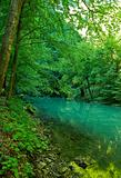 The source of the river Kupa in forest, Croatia