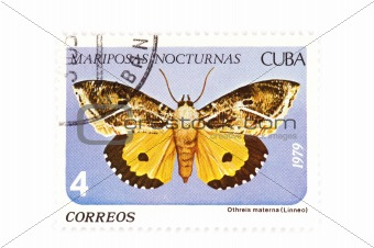 postage stamp butterfly