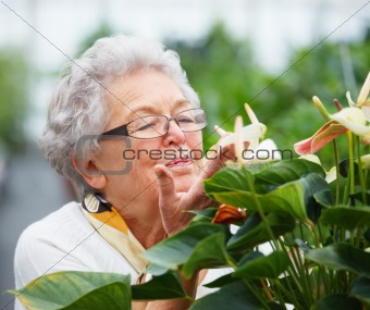 Older woman in her garden smelling the flowers