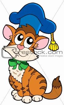Cat teacher in hat