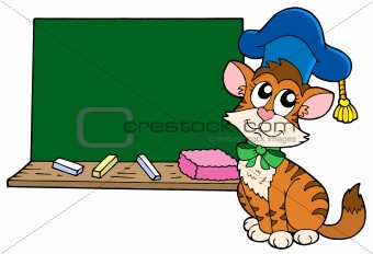 Cat teacher with blackboard