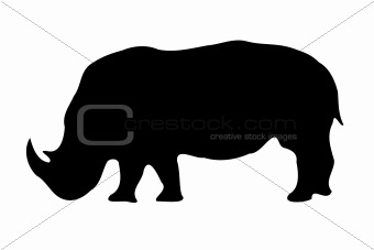 Isolated Rhinoceros silhouette on white