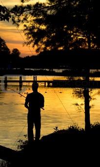 Fishing sunset silhouette