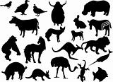 Animals black silhouettes