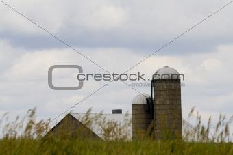 old farm - rural scene