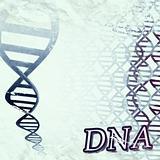 DNA Helix Illustration