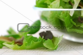 Baby greens