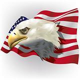 US Patriotic theme