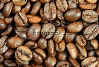 Layer of coffe