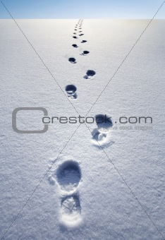 A track of footprints leading to the distant horizon