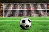 football - penalty in the stadium
