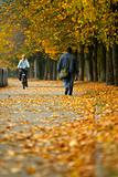 Walk in autumn park