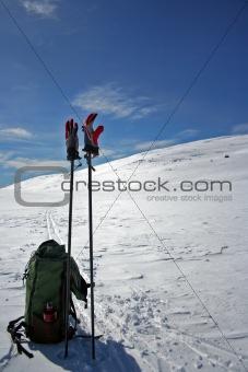 Skipoles