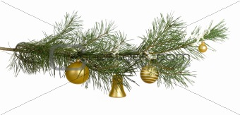 christmas branch with golden baubles