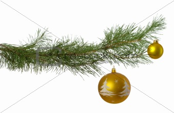 christmas branch with two golden baubles