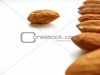 Almonds in a row.