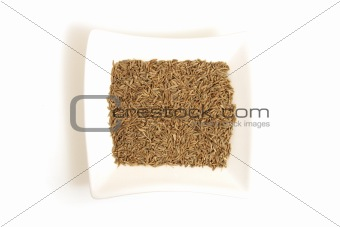 cumin seeds in square white bowl isolated