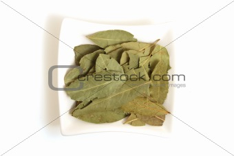 bye leaves in square white bowl isolated