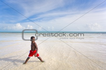 Beach Series - Diversity