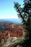 Bryce Overlook with Trees
