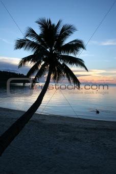 Beach Sunset - Purity