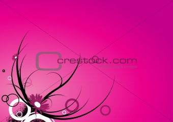 Flower illustration on pink. Vector