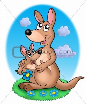 Pair of kangaroos in grass