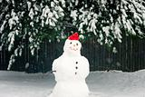 Snowman with Red Hat During Snow Storm