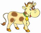 Spotty calf