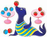 circus seal