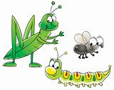 Grasshopper, caterpillar and fly