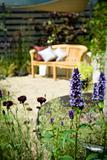 Garden Bench With Cushions And Wildflowers In The Foreground