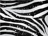 scrapped vector zebra background