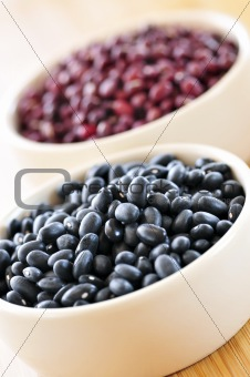 Black and red adzuki beans