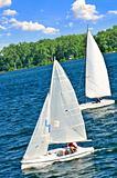 Small sailboats