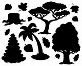 Various trees silhouette collection