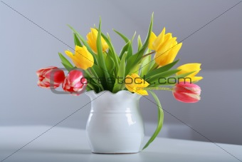 Tulips in vase
