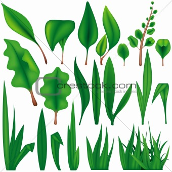 Green Plants Set
