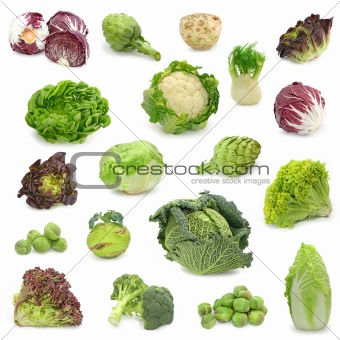 cabbage and green vegetable collection